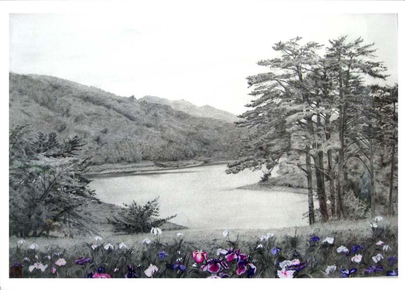 宮守の渓流
