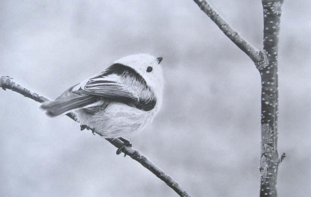 小鳥-しまえなが-