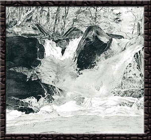 荒川高原の滝